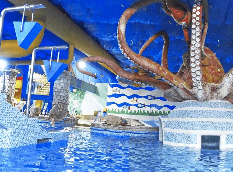 Liberecki Octopus