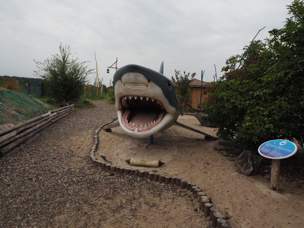 Rekin żarłaczny