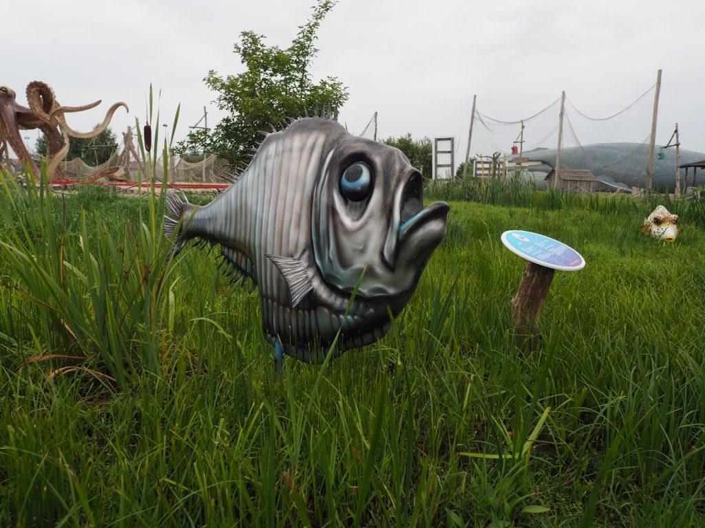 Smutna ryba w sympatycznym parku