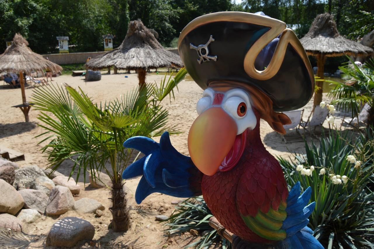 Papuga zachęcająca do wejścia na plażę