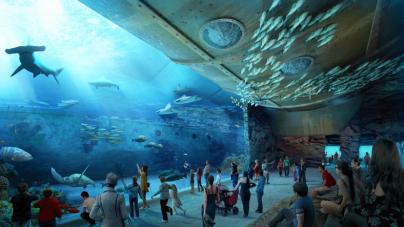 Oceanarium w Gdańsku – budowa ruszy jeszcze w tym roku!