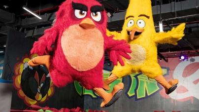 """""""Zakatarzone"""" Angry Birds"""