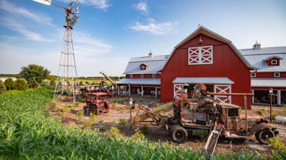 Tractor Farm – farma dla mieszczuchów